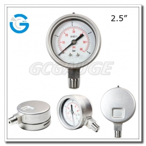 Pressure gauge types with 2.5