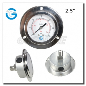 pressure gauge with flange