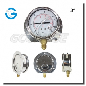 back flange pressure gauges