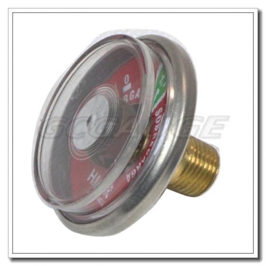 pressure gauge extinguisher