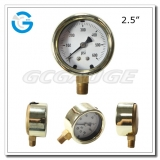 2.5 Bottom connection cast copper case pressure gauges