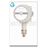 High quality pressure gauge with switch