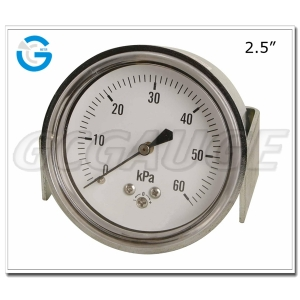 capsule low type pressure gauge