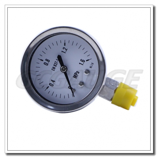 Stainelss steel pressure gauges