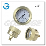 Submersible pressure gauges with back connection
